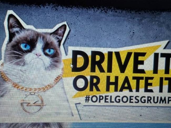 opel.grumpy